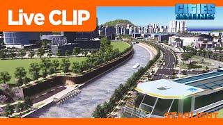 [라이브클립] 관광 페리 운하 (스대강 수로공원 | 시…