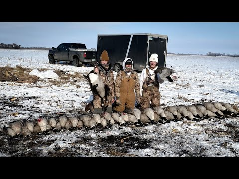 Goose Hunting In The Snow (45 Birds + A Band)