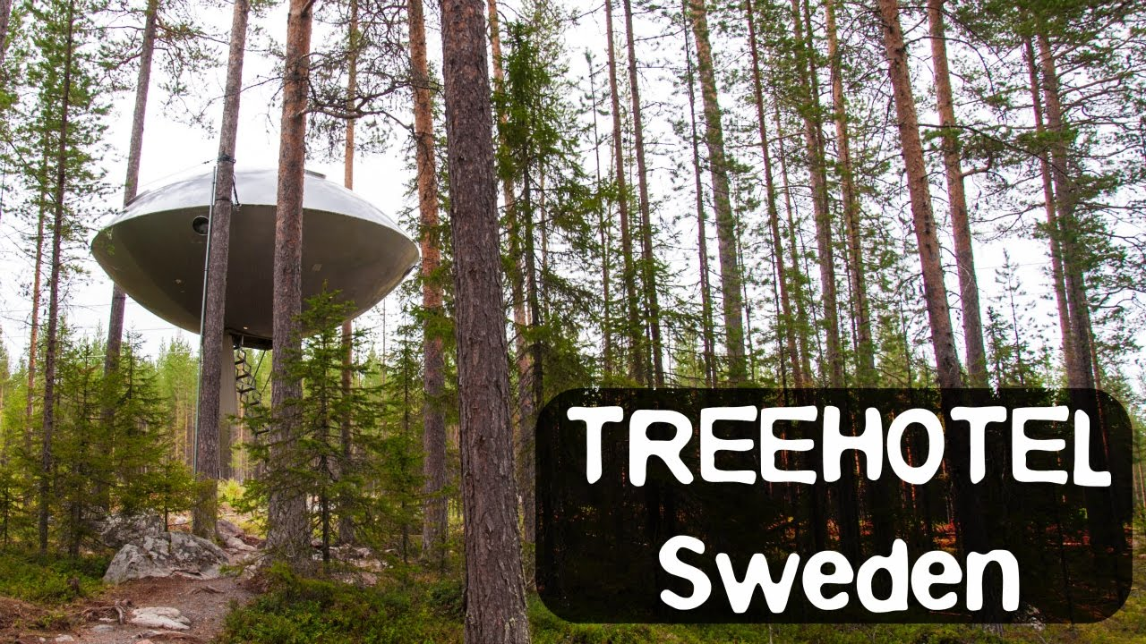 Treehotel Sweden The Famous Mirror Cube The Ufo And More