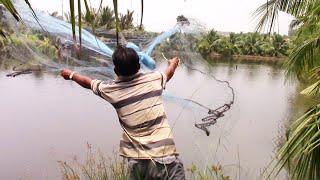 Chài cá sông và chài cá hầm chỗ nào nhiều cá hơn?