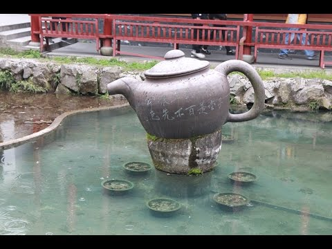 Meijiawu Tea Plantation Hangzhou (Dragon Well)