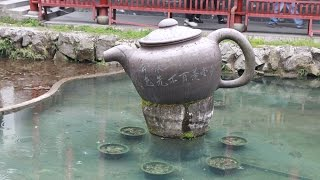Meijiawu Tea Plantation Hangzhou (Dragon Well)