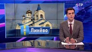 видео новости Линево