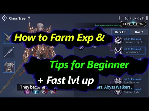 Lineage 2 Revolution How to Farm EXP & Lvl up Fast + Tips for Beginner