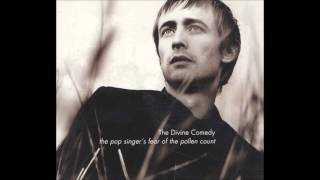 The Divine Comedy - This Side of Paradise