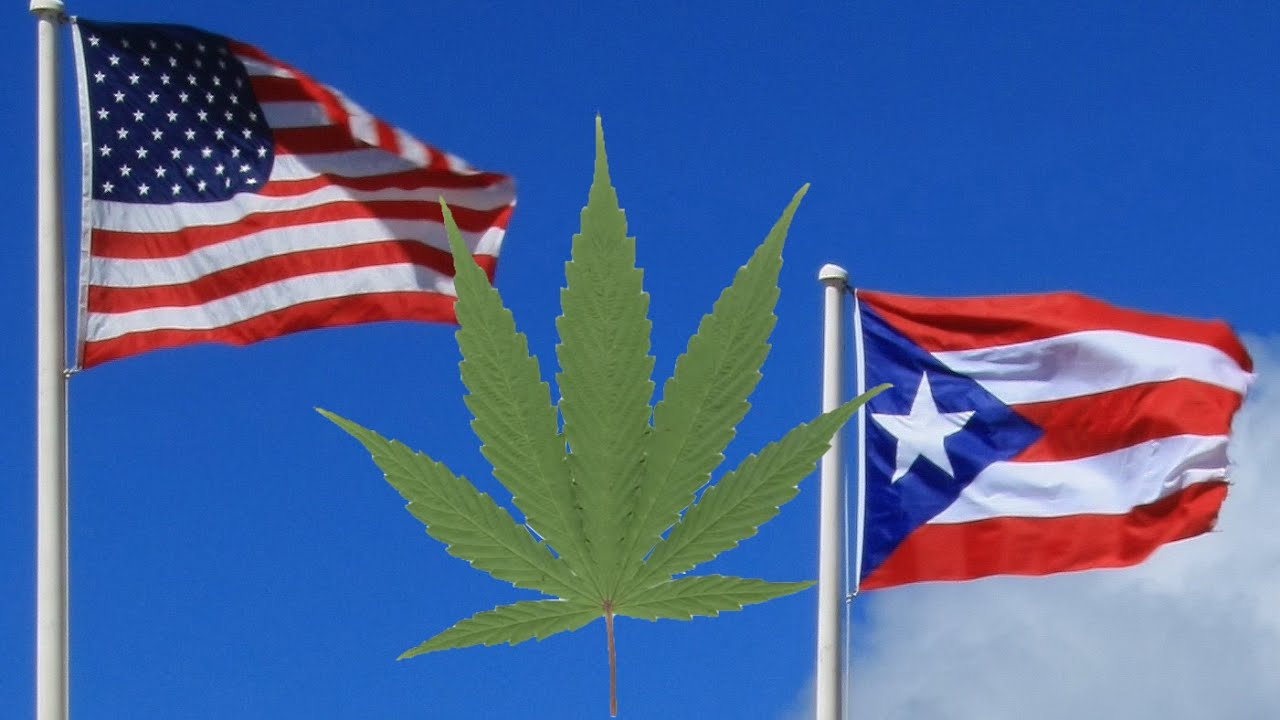 Puerto Rico Legalizes Medical Marijuana