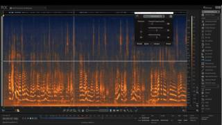 RX 6 | Remove distracting wind noise from audio with De-wind