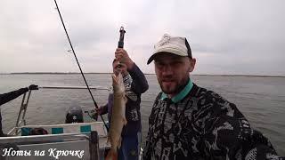 Отчет с реки Волга 16 апреля 2021 первая весенняя щука