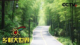 《乡村大世界》 20190511 家乡:江苏·溧阳| CCTV农业