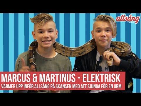 Marcus & Martinus -  Elektrisk | Sjunger för en ORM!