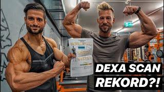 Dexa Scan REKORD?! | Körperfettanteil 9 Days Out!