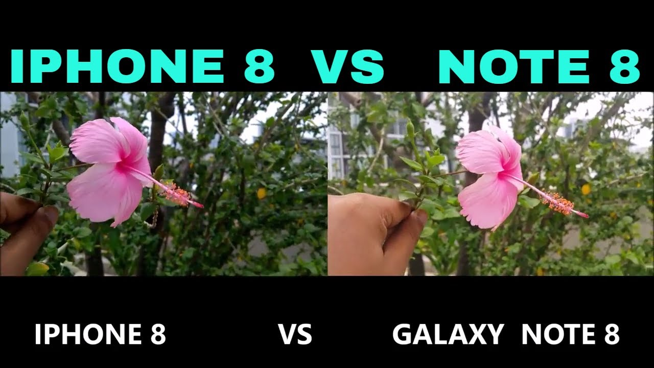 note 8 vs iphone x review