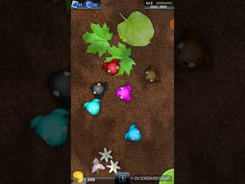 Pocket Frogs: Level 2!!