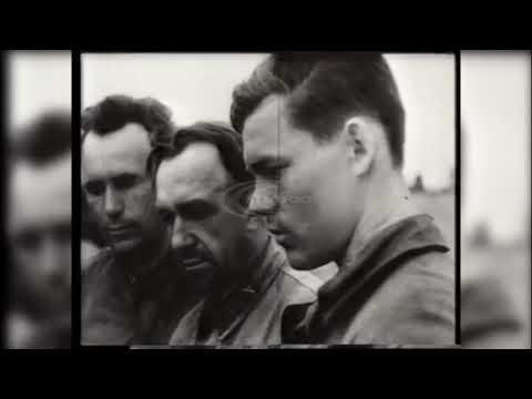 TheSplus: 22 червня виповнюється 78 річниця нападу нацистської Німеччини на Радянський Союз
