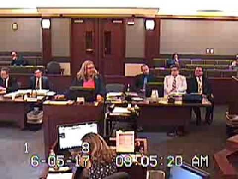 Bully Family Court Lawyer gets SLAPP