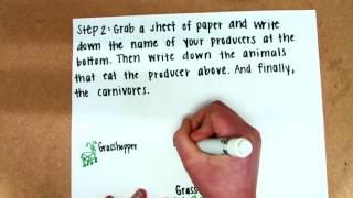 How to Create a Food Web