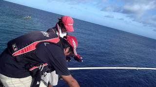 カツオとのやりとりでインパルト大破 カツオクジラ 検索動画 13