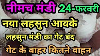 नीमच  मंडी नया लहसुन भाव,New ooty garlic price 24-02-2020 कृषि बाजार भाव, garlic bhav,Lahsun bhav,