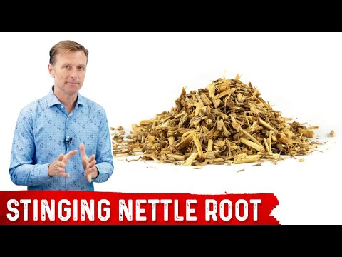 5 Benefits of Stinging Nettle Root