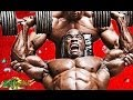 BODYBUILDING TILL IM DEAD mp3