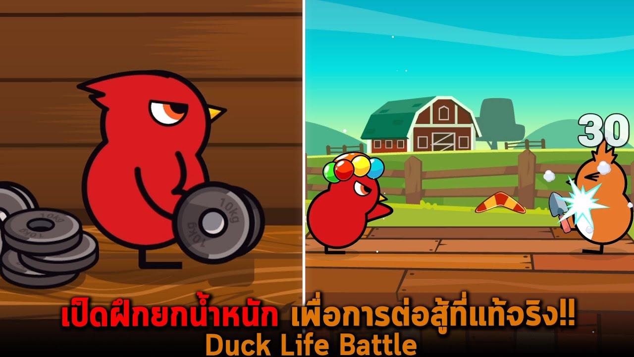 เป็ดฝึกยกน้ำหนัก เพื่อการต่อสู้ที่แท้จริง Duck Life Battle
