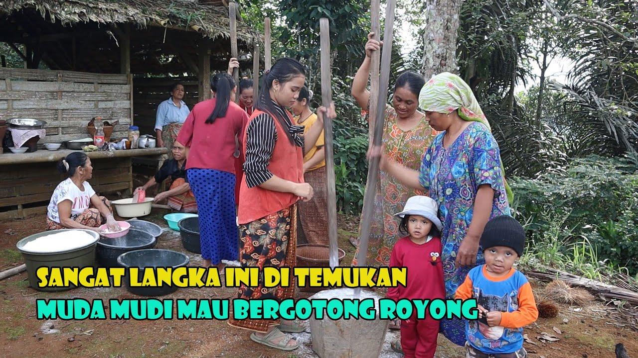 Suasana Pagi Yang Indah Di Kampung Sirna Galih, Muda Mudi Bergotong Royong.