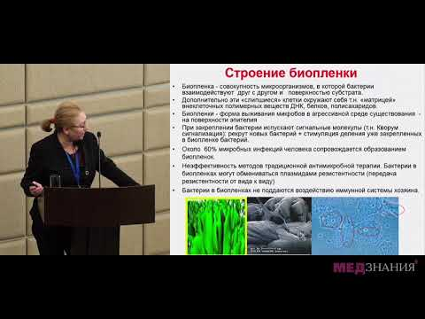 14 Бактериальный вагиноз. Современный взгляд на проблему
