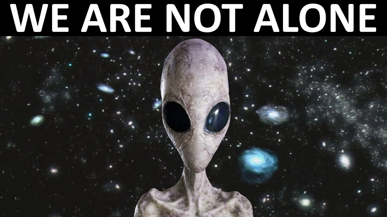 After This Video, You Will BELIEVE IN ALIEN LIFE