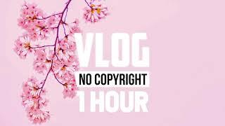 [1 Hour] - Tobu, Bonalt & Hadi - Find Myself (ft. Tom Mårtensson) (Vlog No Copyright Music)