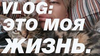 VLOG: IT'S MY LIFE (с Герой, Женей, Хлоей, Симбой)