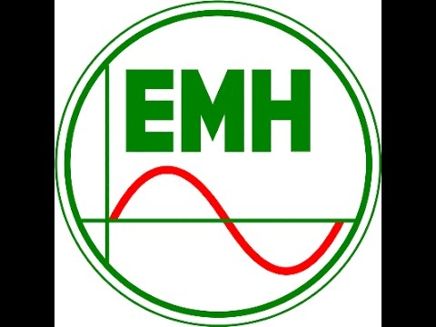 Efficient Market Hypothesis EMH..........