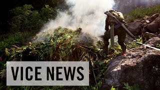 The Rise of Mexican Black Tar Heroin (Trailer)