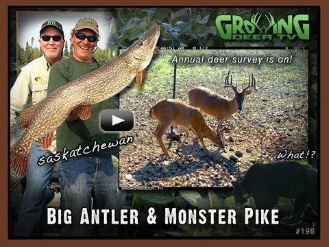 Big Antlers And Tools For Better Deer Hunting (#196) @GrowingDeer.tv