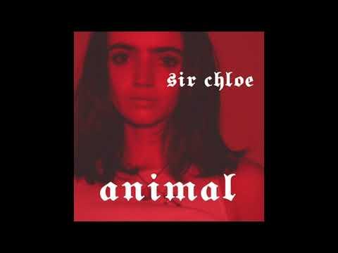 Sir Chloe - Animal