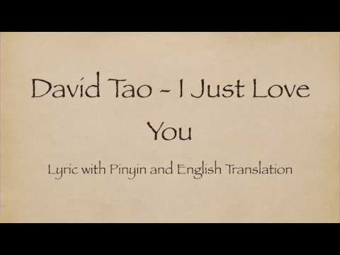 David Tao 陶喆 - I Just Love You 就是爱你 with Pinyin and English Translation