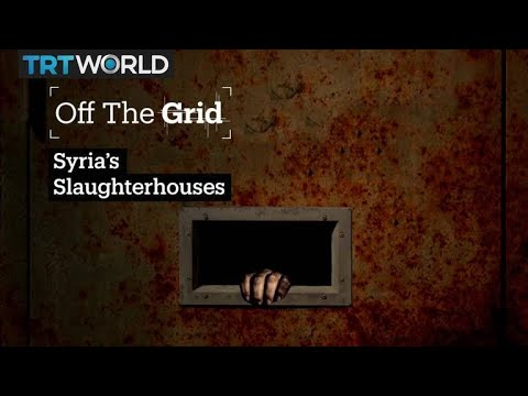 Off The Grid: Syria's Slaughterhouses
