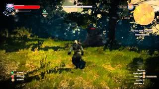The Witcher 3 :  Hexerauftrag - Der Herr des Waldes