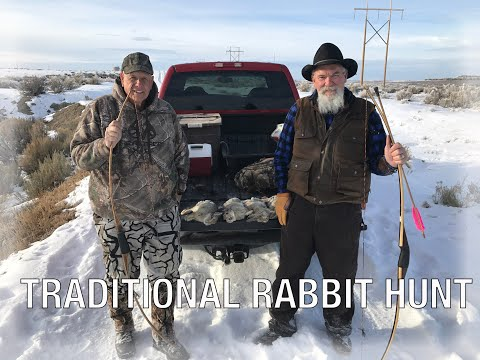 Traditional Rabbit Hunt With Recurve And Longbows