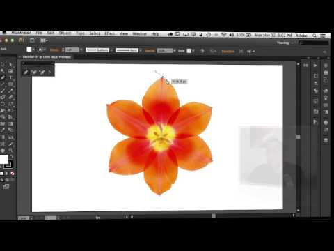 How To Use The Pen Tool In Adobe Il Rator Oshop And Indesign Cs6