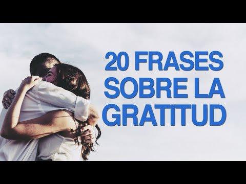 20 Frases Sobre La Gratitud Para Valorar Los Detalles