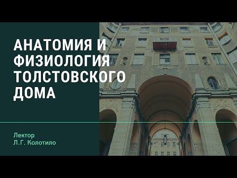 Анатомия и физиология Толстовского дома