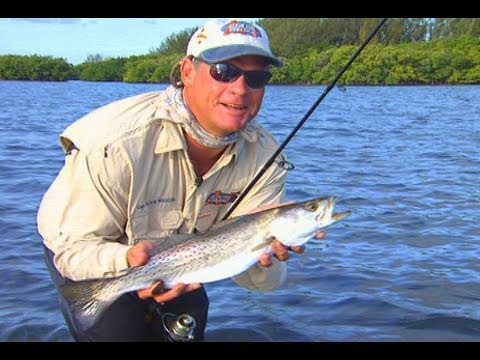 TROUT fishing and SNOOK fishing with DOA Shrimp in Stuart Florida