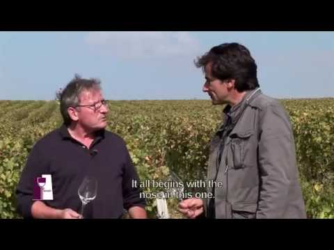 Understanding Loire Valley Sancerre with Alphonse Mellot