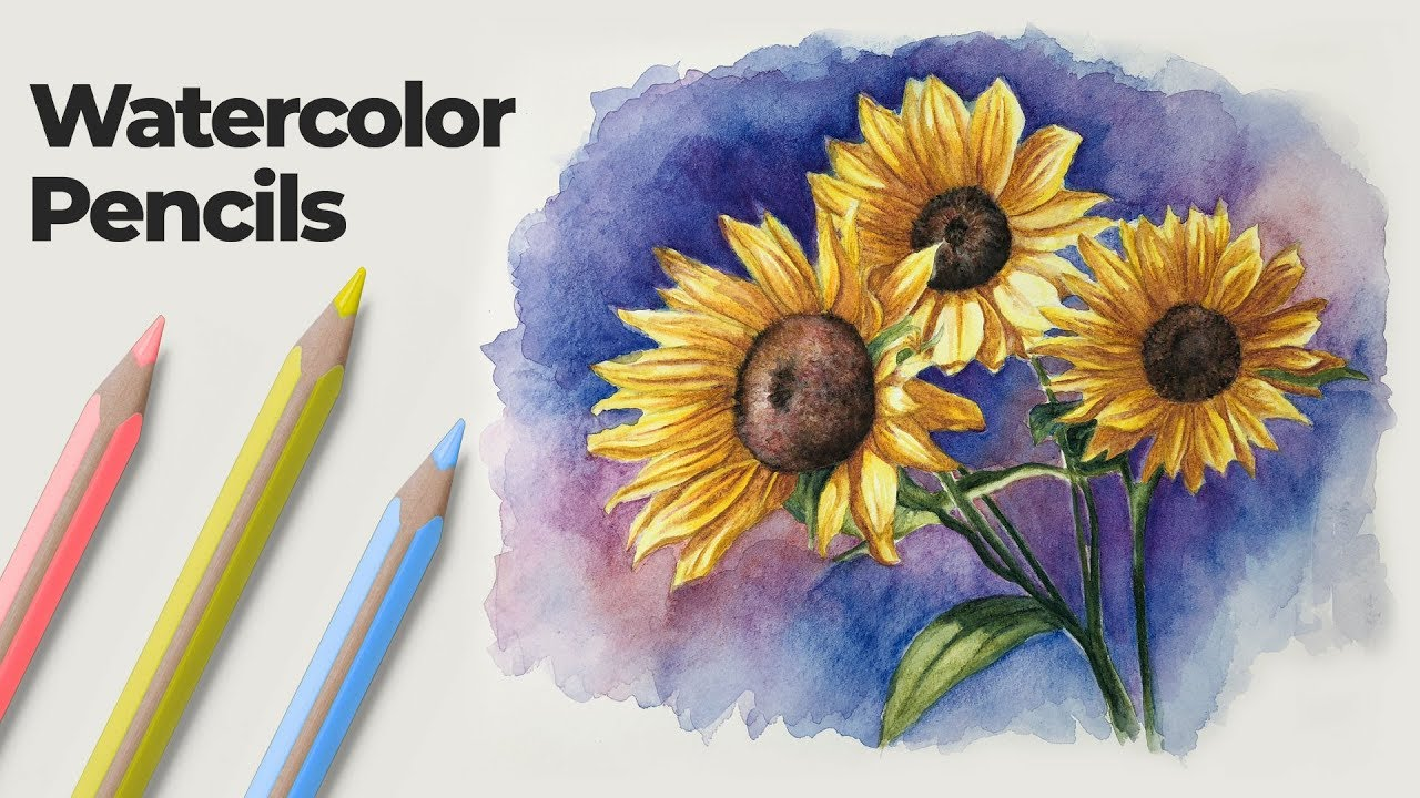 How to Use Watercolor Pencils - Techniques and Demonstration - YouTube