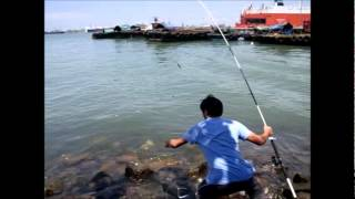 Fishing in Singapore-钓鱼4