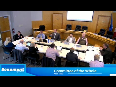 Special Committee of the Whole