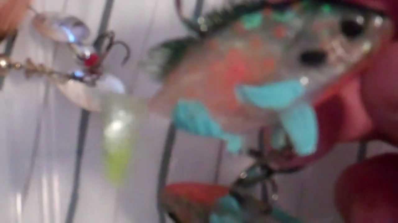 Bass Fishing Lures ; Using Bluegills As Bait