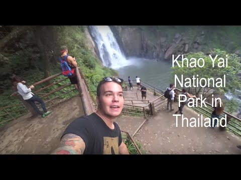 Khao Yai National Park Trip, Thailand
