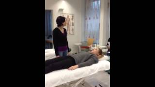 Video Eselsbrücken zum Erlernen der Muskeltests von Touch for Health download MP3, 3GP, MP4, WEBM, AVI, FLV Juli 2018