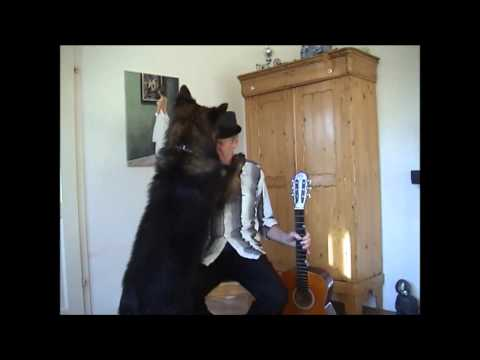 dog hates guitar music